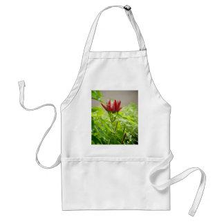 Chili-Blume Schürze