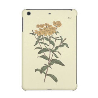 Chili-Ringelblumen-botanische Illustration
