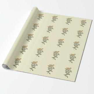 Chili-Ringelblumen-botanische Illustration Geschenkpapier