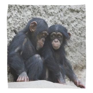 Chimpanzee002 Halstuch