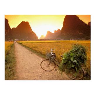 China, Guangxi. Yangzhou, Fahrrad auf Land Postkarte