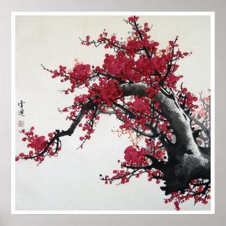 Chinesische Kirschblüte Posterdrucke