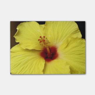 Chinesische Rosen-Blume des gelben Hibiskus in der Post-it Klebezettel
