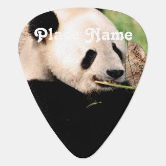 Chinesischer Panda Plektron