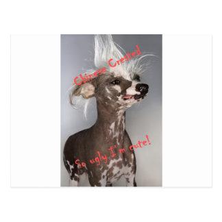 Chinesisches Crested so hässliches bin ich Postkarte