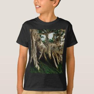 Chinsese Bantambaumficus-Bonsais-Wurzeln T-Shirt