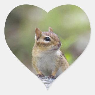 Chipmunk auf einem Felsen Herz-Aufkleber