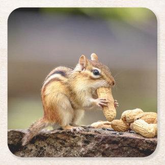 Chipmunk, der eine Erdnuss isst Rechteckiger Pappuntersetzer