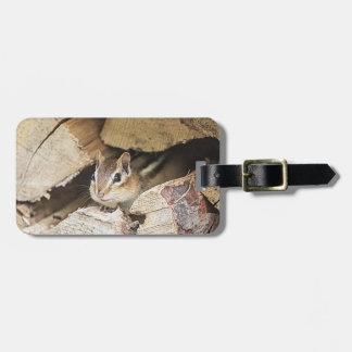 Chipmunk in einem hölzernen Stapel Kofferanhänger