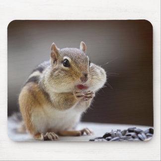 Chipmunk mit Backen-vollem Foto Mousepad
