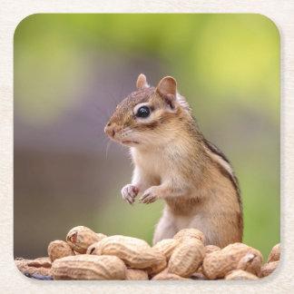 Chipmunk mit Erdnüssen Rechteckiger Pappuntersetzer