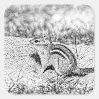 Chipmunk-Skizze Quadratischer Aufkleber