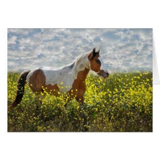 Choctaw-Pferd in Senf Pflanzen Karte