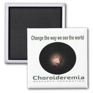 Choroideremia Änderung sehen wir die Welt - Quadratischer Magnet