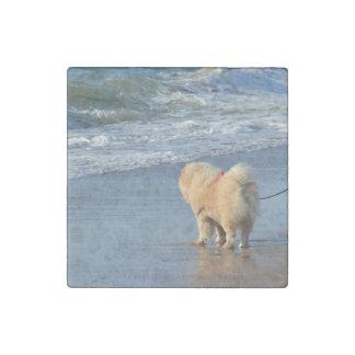 Chow-Chow auf Strand Steinmagnet
