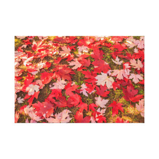 chromatische Magie des Herbstes auf eingewickelter Leinwanddruck