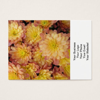 Chrysantheme-Pflanzen-Gruppen-Pfirsich Visitenkarte
