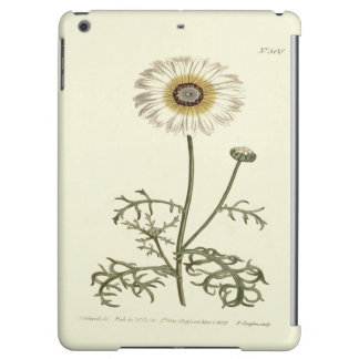 Chrysantheme-Tricolor gelbe Illustration