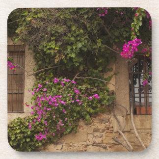 Ciudad monumental, Blume-bedeckte Gebäude 2 Getränkeuntersetzer