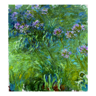 Claude Monet: Agapanthus Posterdruck