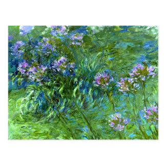 Claude Monet: Agapanthus Postkarte