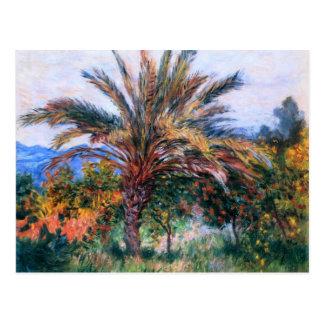 Claude Monet: Palme bei Bordighera Postkarte