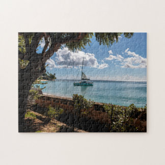 Clearwater Barbados Puzzle