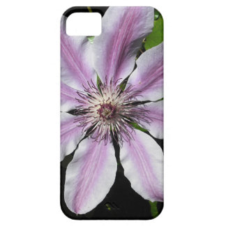 Clematis Nellie Moser Barely There iPhone 5 Hülle