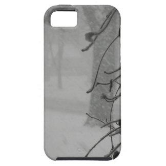 Clematis- und Schneefall während eines Blizzards iPhone 5 Etui