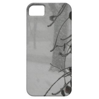 Clematis- und Schneefall während eines Blizzards iPhone 5 Hülle
