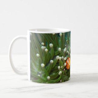 Clown-Fische im korallenroten Garten von Sipadan Kaffeetasse