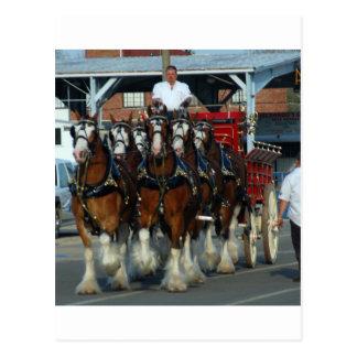 Clydesdale 6 Pferdeanhängevorrichtung Postkarte