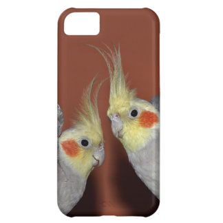 Cockatiel-Duo iPhone 5 Fall iPhone 5C Hülle