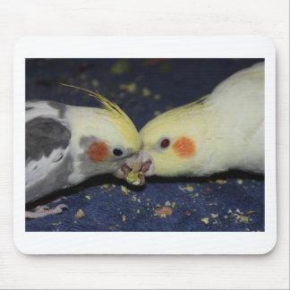 Cockatiel-Liebe Mousepad