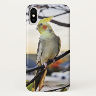 Cockatiel-Profil-Fotografie iPhone X Hülle