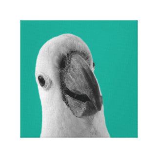 Cockatoopapageientropisches TierFoto Schwarz-weiß Leinwanddruck