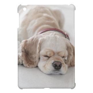 Cocker spaniel-Hundeschlafen iPad Mini Hülle