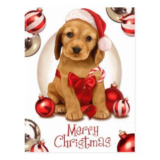 Cocker spaniel-Weihnachten Postkarte