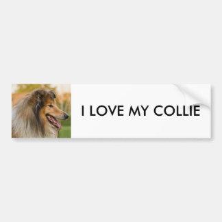 Collie Autoaufkleber