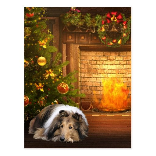 Collie-Weihnachten Postkarte