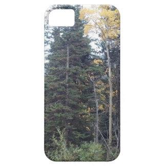 Colorado-Fall in die Rockies iPhone 5 Etui