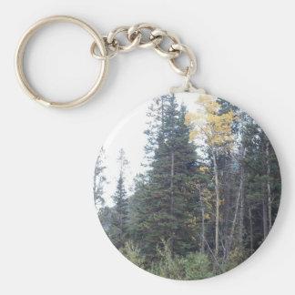 Colorado-Fall in die Rockies Schlüsselanhänger