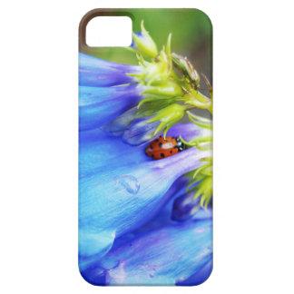 Colorado-Schönheit iPhone 5 Schutzhülle