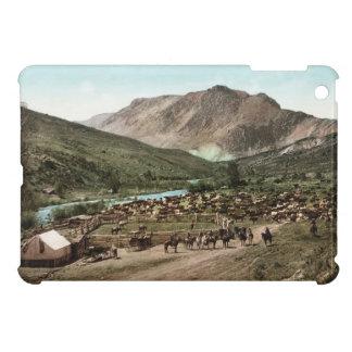 Colorado-Zusammenfassung iPad mini glatter Endfall Hülle Fürs iPad Mini