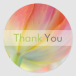 Colors of Spring Tulip • Thank You Sticker