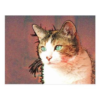 Colourkat Postkarte