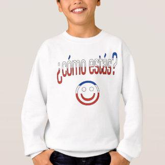 ¿ Cómo Estás? Chile-Flaggen-Farben Sweatshirt
