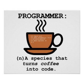 Computerprogrammierer-Spezies-Definition lol Poster