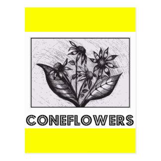 Coneflowers Postkarten