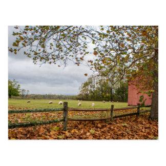 Connecticut-Fall-Bauernhof-Postkarte Postkarte